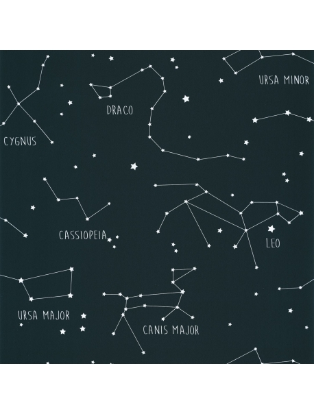 Papel Constellations Black